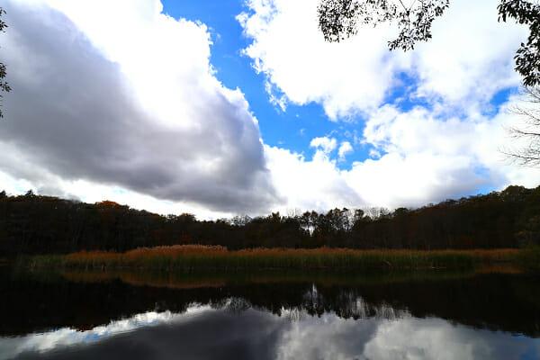 大久保の池